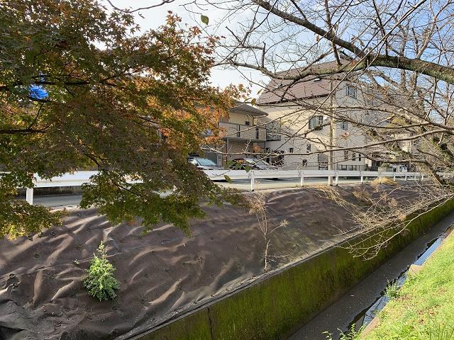 昭和町の水路